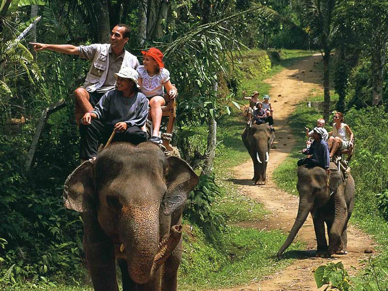 普吉岛 漂流 骑大象 表演 鱼疗 atv 瀑布 一日游